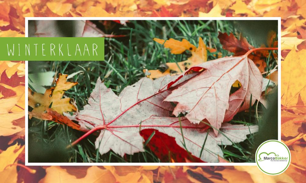 De herfstkleuren zijn weer goed zichtbaar