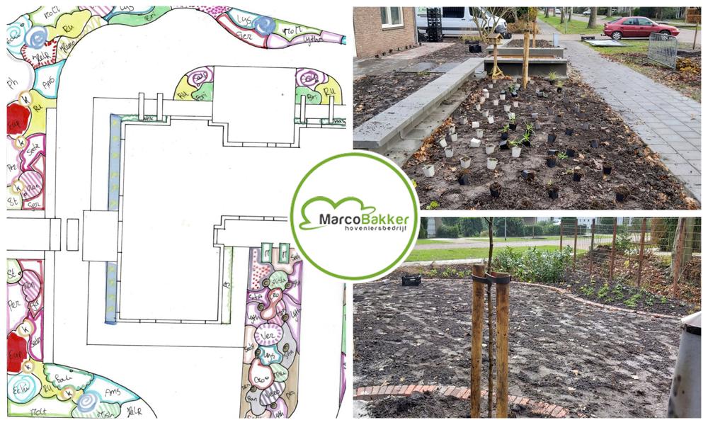 Een beplantingsplan en een tuinontwerp. Samen staan ze sterk.