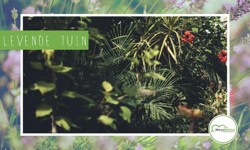 In een levende tuin valt altijd iets te beleven!