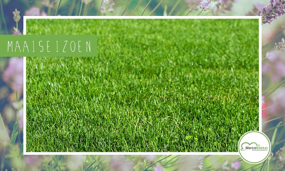 Heb jij de grasmaaier al uit zijn winterslaap gehaald?